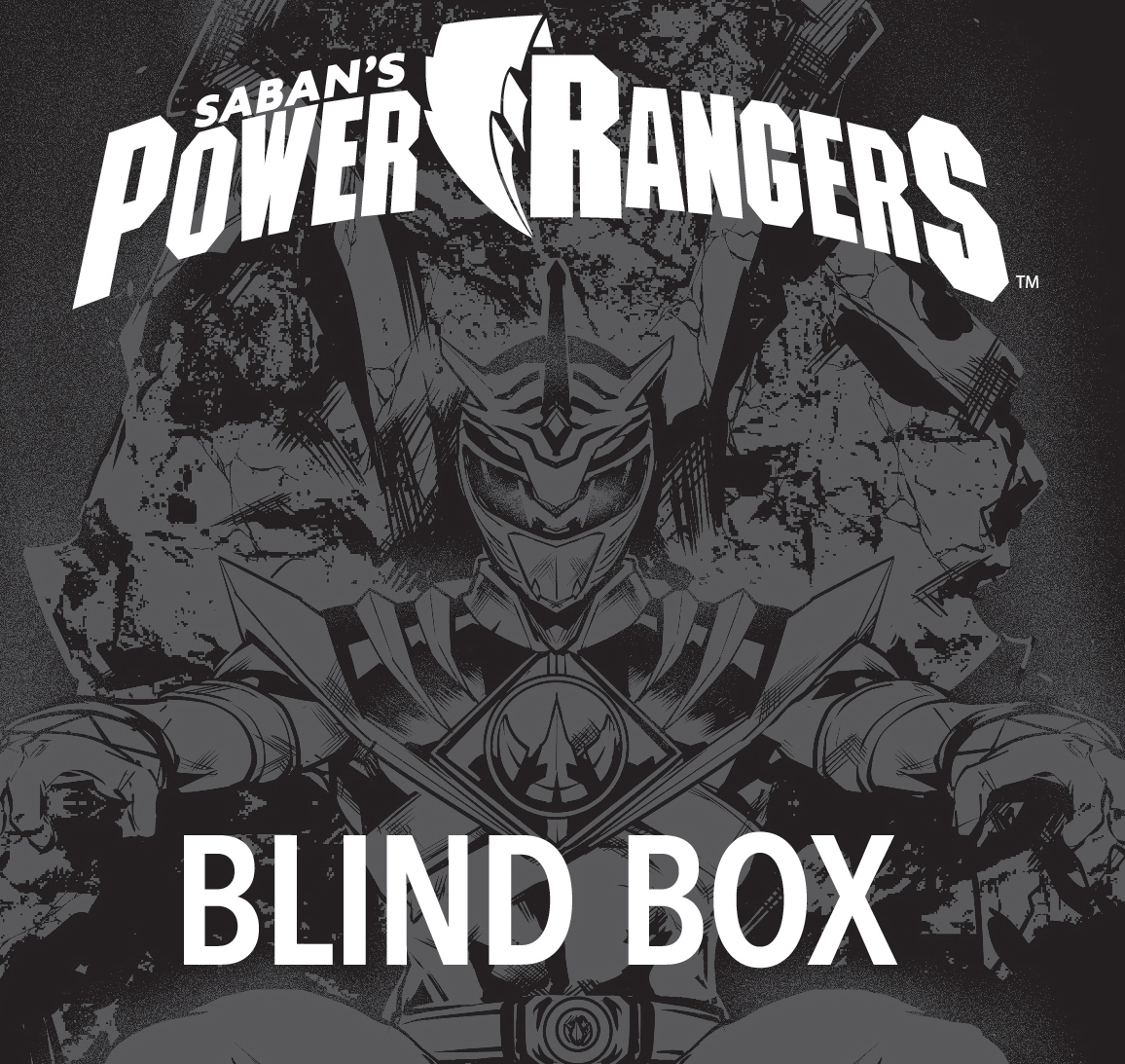 LCSD 2018 MIGHTY MORPHIN POWER RANGERS YEAR TWO BLIND BOX - BOOM! Studios